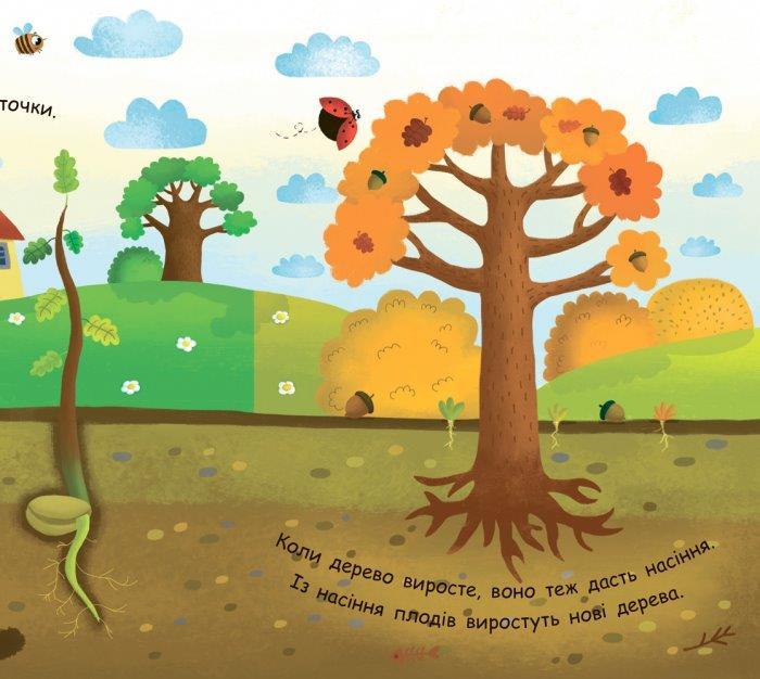 Як виростає дерево? Моя перша енциклопедія Ранок