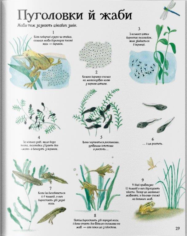 книга про природу