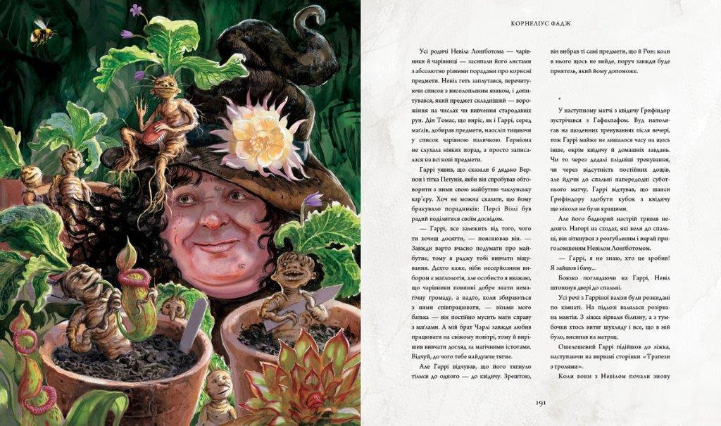 Книга Гаррі Поттер і таємна кімната ілюстроване видання