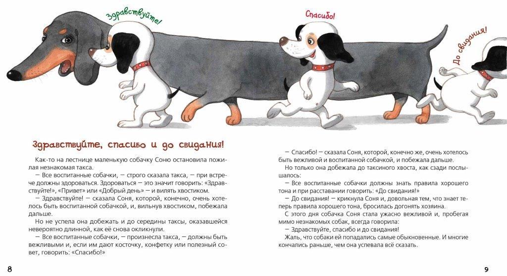 Книжка умная собачка соня
