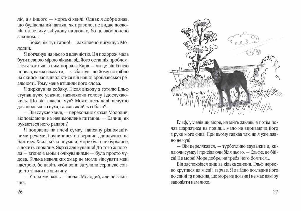 Книга Ельф Всемогутній Книга №2