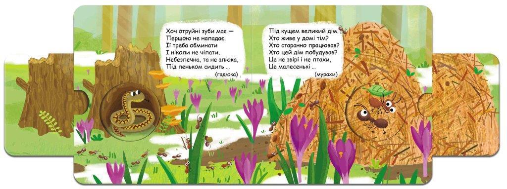Книга Хто сховався в лісі?