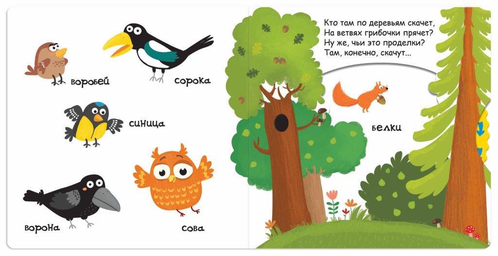 Книга Кто живет в лесу
