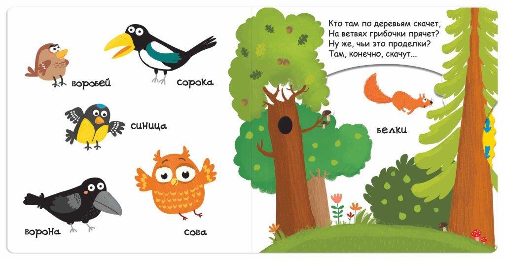 Книга Кто живет в лесу Федиенко
