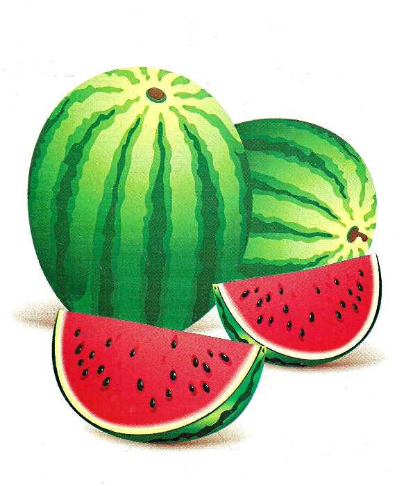 Картки Овочі фрукти ягоди