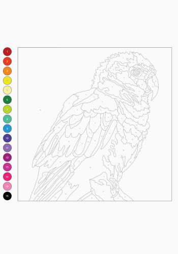 Розмальовка Колортронік. Світ тварин 6+, 64 с. Жорж